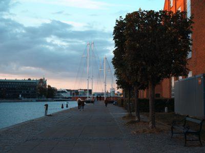 コロナ禍のデンマークの公共から探る「ニューノーマル」へのヒント